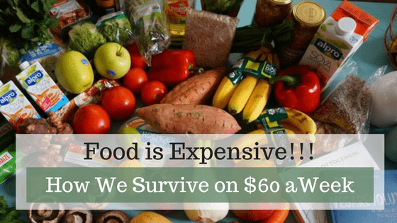 I'm going to show you three ways we survive, and I daresay thrive on a $60 weekly food budget. Food is expensive. $60 a week is not a lot of money, but if you plan ahead, buy in bulk, get good at meal prepping, and avoid impulse shopping, it really is enough for two people!