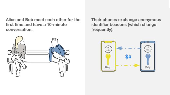 Captura de pantalla de la descripción general de Google y Apple de su propuesta de rastreo de contactos
