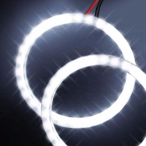 Oracle Halog Lights 2