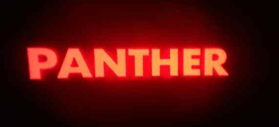 panter-logo