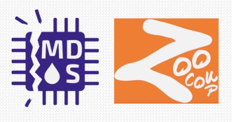 Microarchitectural Data Sampling (MDS) Vulnerabilities Summary