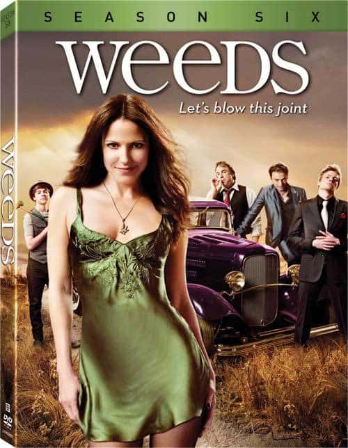 Weeds: The Complete Season 6 on DVD co-starring Patrick Fischler, Mr. Media Interviews