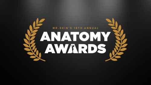 Mr. Skin's 18th Annual Anatomy Awards, Mr. Media Interviews