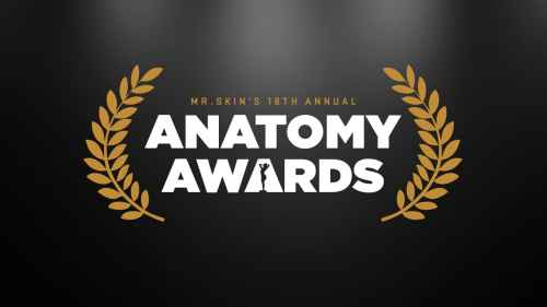 Mr. Skin's 18th Annual Anatomy Awards, Mr. Media Interviews