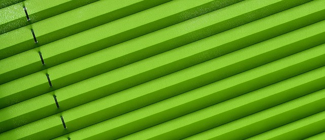 Pleated or Duette Blinds