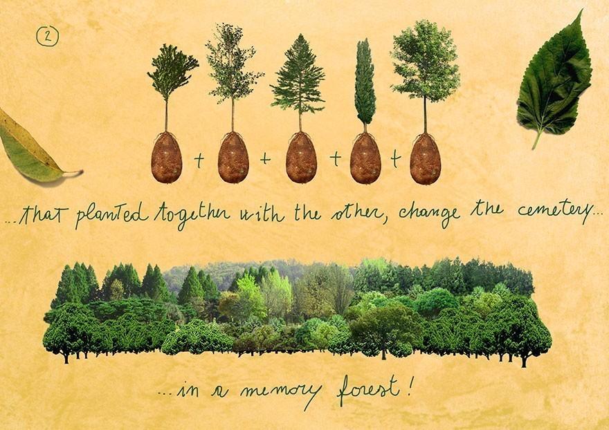 biodegradable-burial-pod-memory-forest-capsula-mundi-8