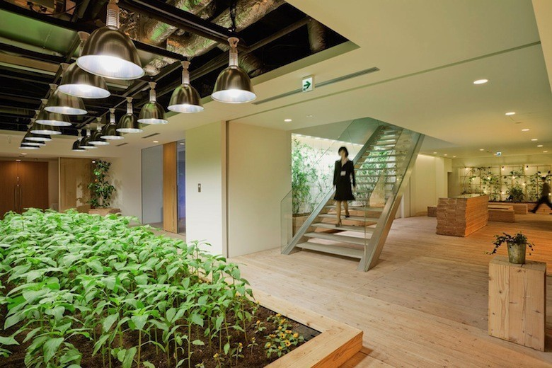 Urban-Farm-at-Pasona-Tokyo-Headquarters-ideasgn2-Yoshimi-Kono