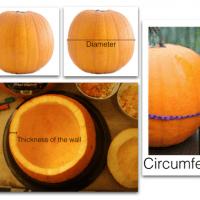 Pumpkin Timebomb