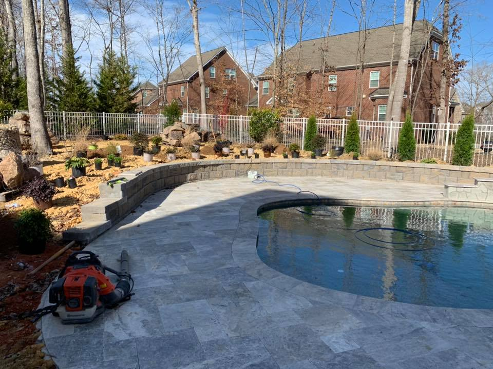 Beautiful pool with new plantings around