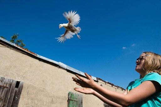 Broniszow, 12.09. 2015. Dziewczynka bawi się z młodym indykiem. Fot. Joanna Mrowka / FORUM