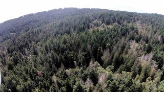 Photo 3: 5710 CANAL Road: Pender Island Land for sale (Islands-Van. & Gulf)  : MLS®# R2390788