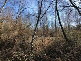 Photo 2: LOT 25 SHELL Road in Richmond: McLennan North Land for sale : MLS®# R2466828