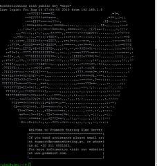 Σύνδεση με SSH. Το ascii art δεν είναι πολύ καθαρό, είναι η γάτα μου :-)