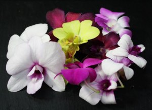 Edible flowers: orchids