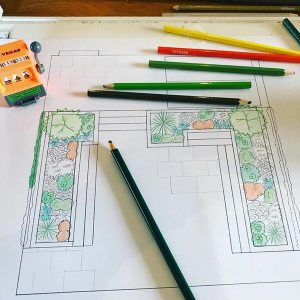 Secrets of good garden design - planning