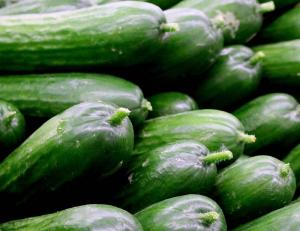 Gardening jobs for August: Harvest tomatoes and cucumbers