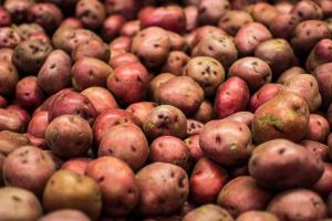 Gardening jobs for July: Harvest early potatoes