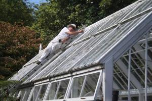 Gardening jobs for June: Shading