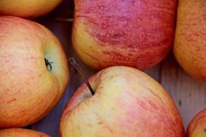Gardening jobs for September: Pick apples