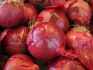 Gardening jobs for September: Plant onions