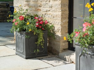 Container Gardening: Square shaped planter