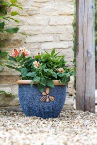 Container Gardening: Big blue plant pot