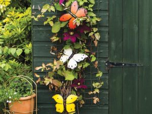 Container Gardening: Butterflies on wall trellis