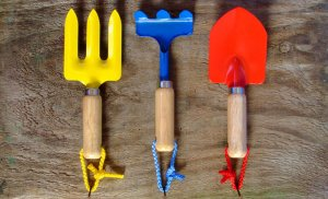 Plants for kids: Gardening tools