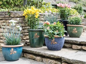 Container Gardening: Plant pots on stairs