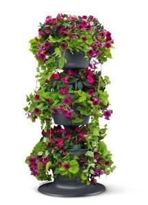 Win a total balcony garden