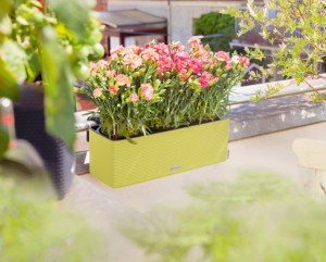 Win a total balcony garden
