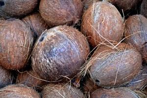 Plastic free gardening - Coconut coir