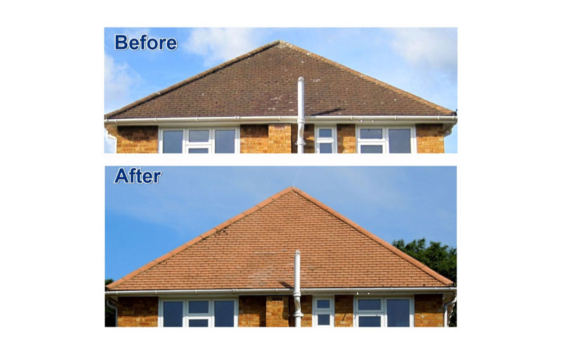 Wet & Forget Before and After: Roof