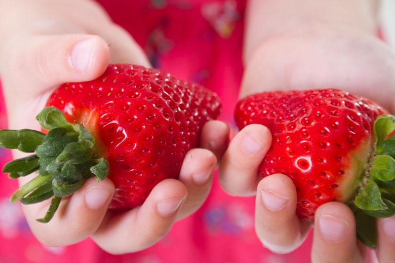 QVC Gardening April 2019 highlights: Colossus strawberry