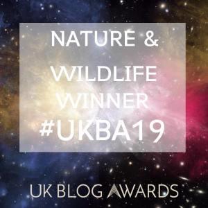 UK Blog Awards 2019