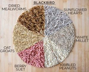 Blackbird food mix