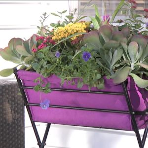 VegTrug Deluxe Planter