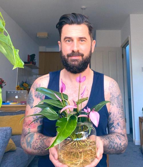 Anthurium - Mr Plant Geek
