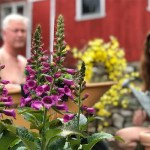 World Naked Gardening Day - women's feature