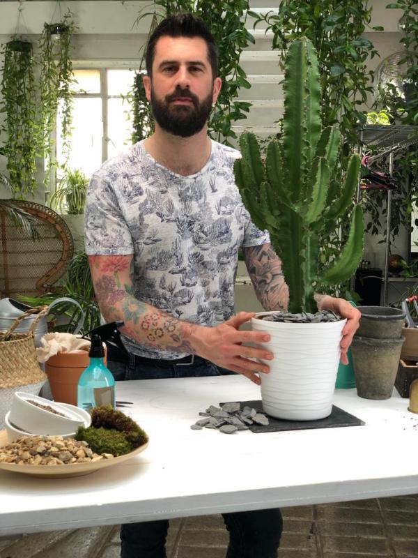 Mr Plant Geek - cactus