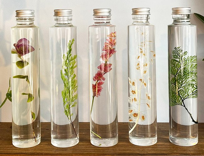 Liquid Terrariums