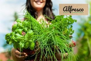 Alfresco vegetables