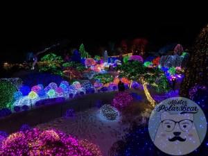 晨靜樹木園,아침고요수목원,五色星光展,樹木園,夜景2