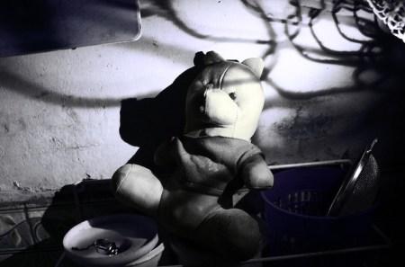 lost,lonelybear,lone,alone,getlost,迷失
