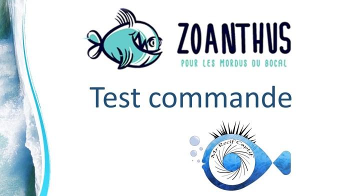 logo https://www.zoanthus.fr