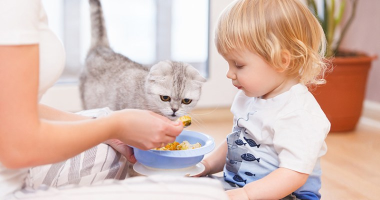 What Every Mom Should Know Before Cleaning Their Cat Litter Box