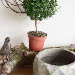 So Dekoriert Ihr Pflanzen In Ubertopfen Ganz Naturlich Und Einfach Mrs Greenery