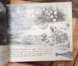 Page of book with beautiful pencil drawing of a frog and frogspawn