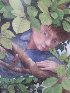 illustration of a boy in a tree looking curiously at an inch tall man standing on a branch
