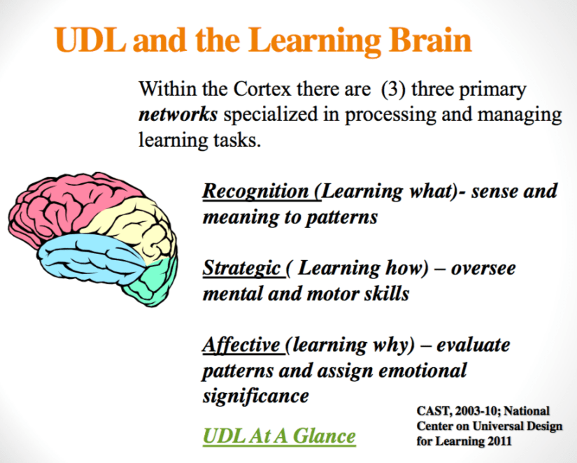UDL and the Learning Brain Image